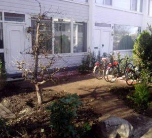 Tuinaanleg- en onderhoud in Amstelveen