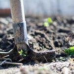 onderhoud-in-de-tuin-in-het-najaar