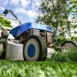 Het belang van tuinonderhoud na de tuinaanleg